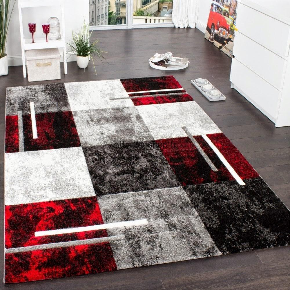 tapis de salon rouge - Tapis De Salon Rouge