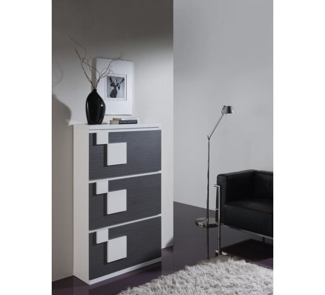 meuble chaussures design pas cher 9 id es de. Black Bedroom Furniture Sets. Home Design Ideas