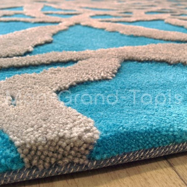 tapis de salon bleu turquoise 5 id es de d coration. Black Bedroom Furniture Sets. Home Design Ideas