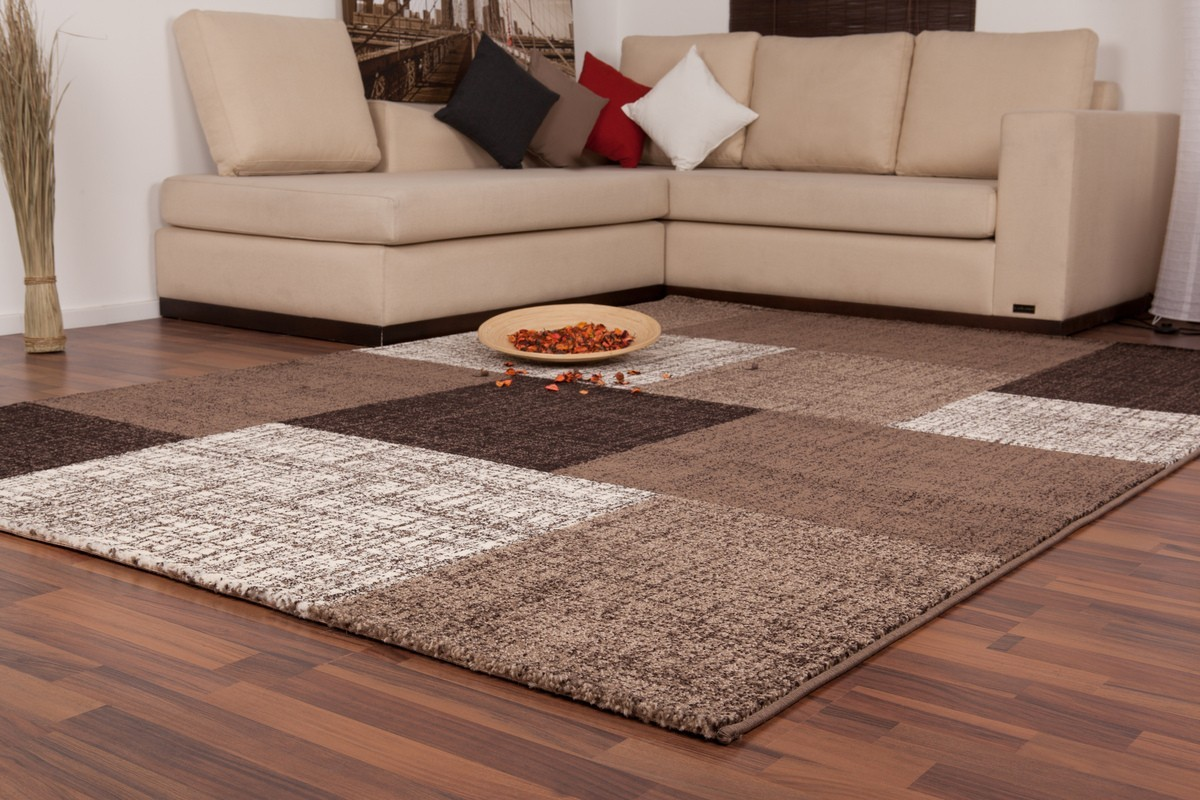 Tapis salon beige marron id es de d coration int rieure for Tapis pour salon