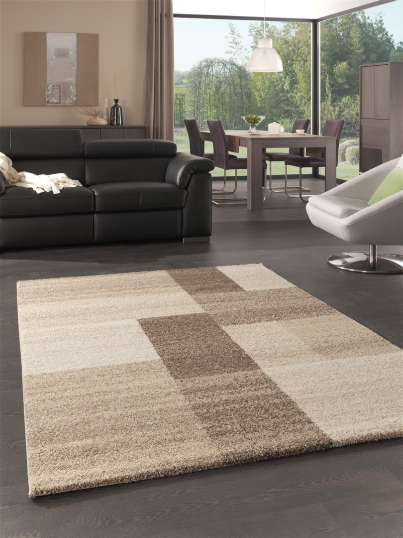 tapis beige salon id es de d coration int rieure french decor. Black Bedroom Furniture Sets. Home Design Ideas