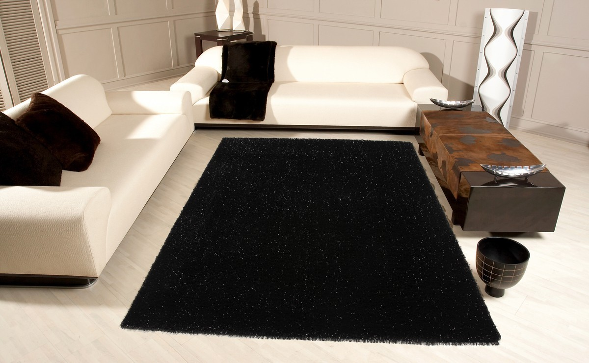 tapis de salon noir id es de d coration int rieure french decor. Black Bedroom Furniture Sets. Home Design Ideas