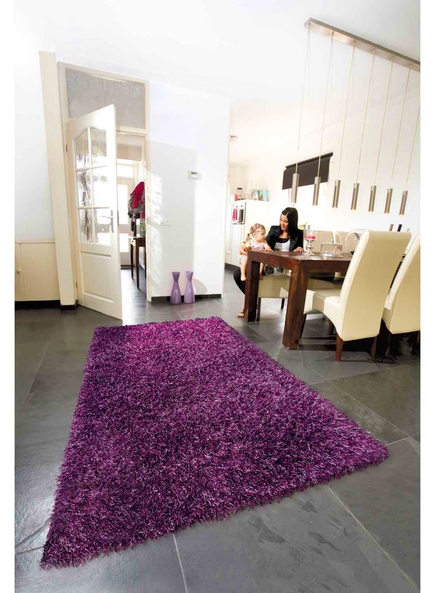 Tapis salon mauve id es de d coration int rieure for Salon mauve
