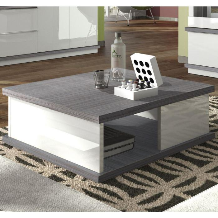 table basse blanche et grise id es de d coration int rieure french decor. Black Bedroom Furniture Sets. Home Design Ideas
