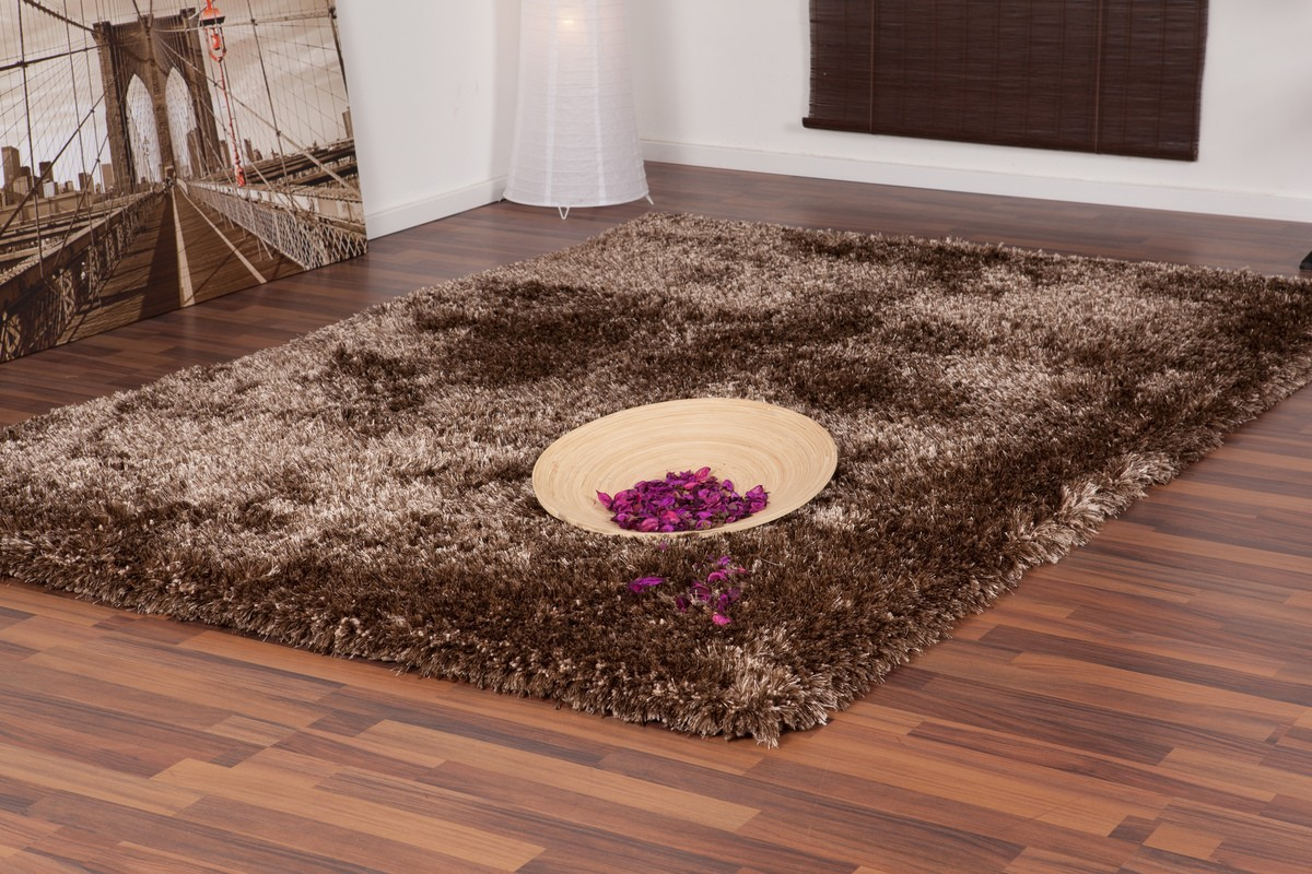 Best Tapis Salon Marron Chocolat Pictures - House Design ...