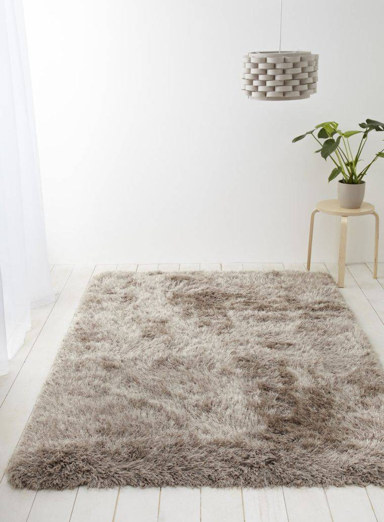 Tapis De Salon Taupe Idees De Decoration Interieure French Decor