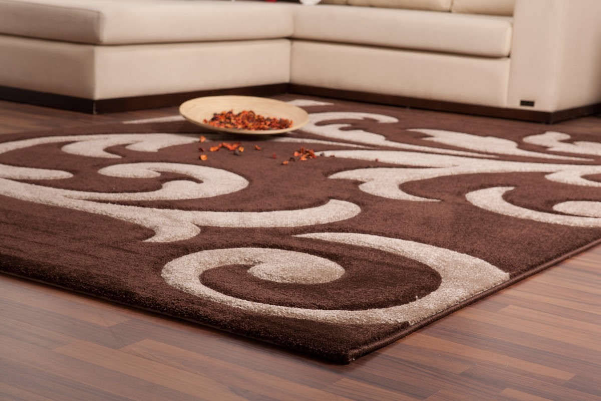 Tapis salon beige marron id es de d coration int rieure for Des idees de decoration interieure