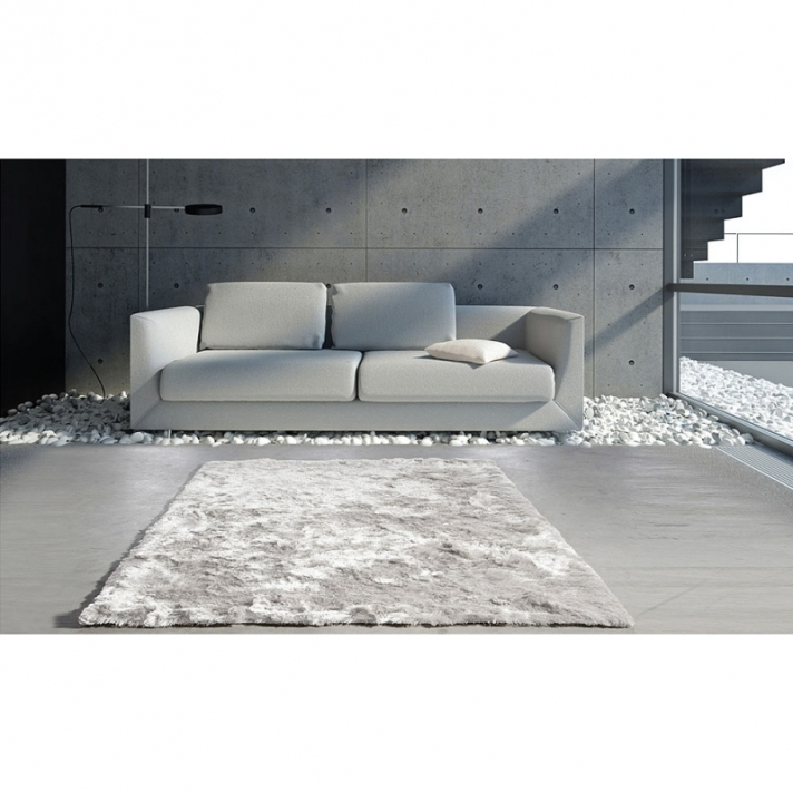 tapis salon gris clair id es de d coration int rieure. Black Bedroom Furniture Sets. Home Design Ideas