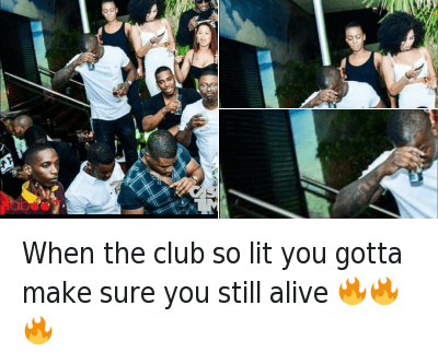 you are lit