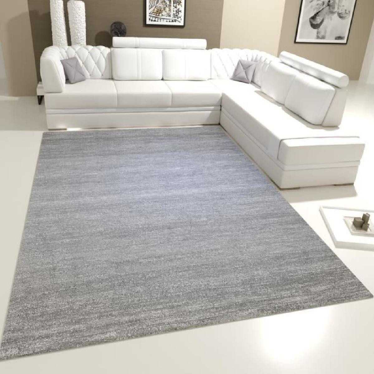 tapis blanc pas cher id es de d coration int rieure french decor. Black Bedroom Furniture Sets. Home Design Ideas