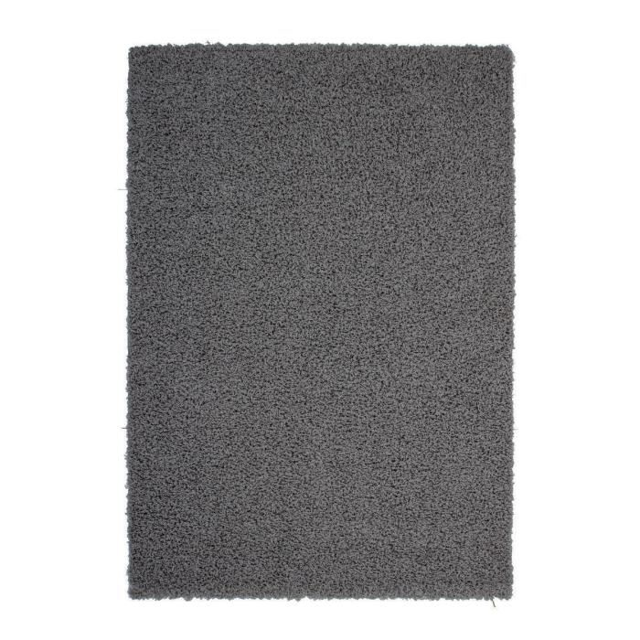 tapis salon gris anthracite id es de d coration int rieure french decor. Black Bedroom Furniture Sets. Home Design Ideas
