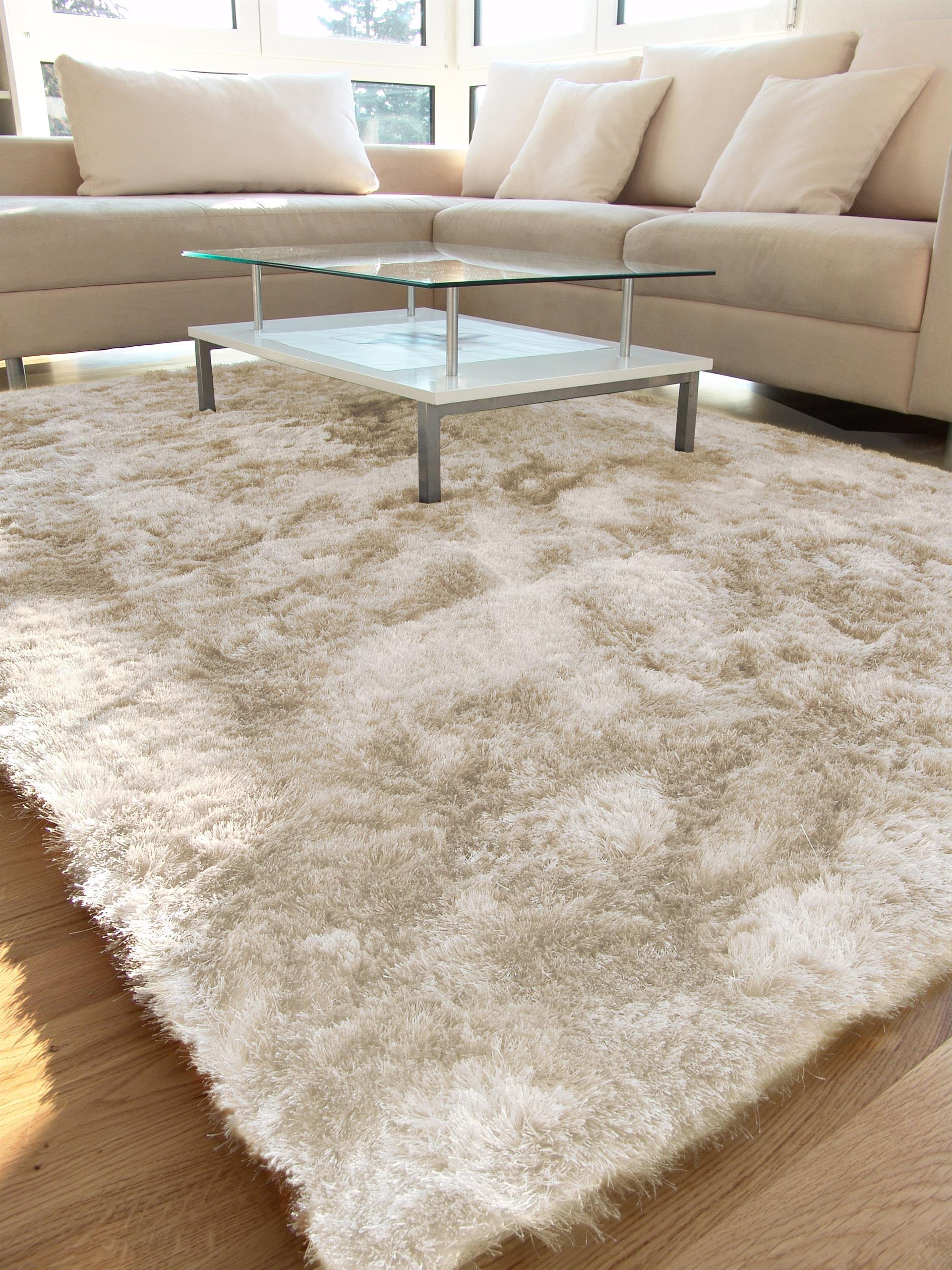 Tapis De Salon Taupe 4 Idees De Decoration Interieure French Decor