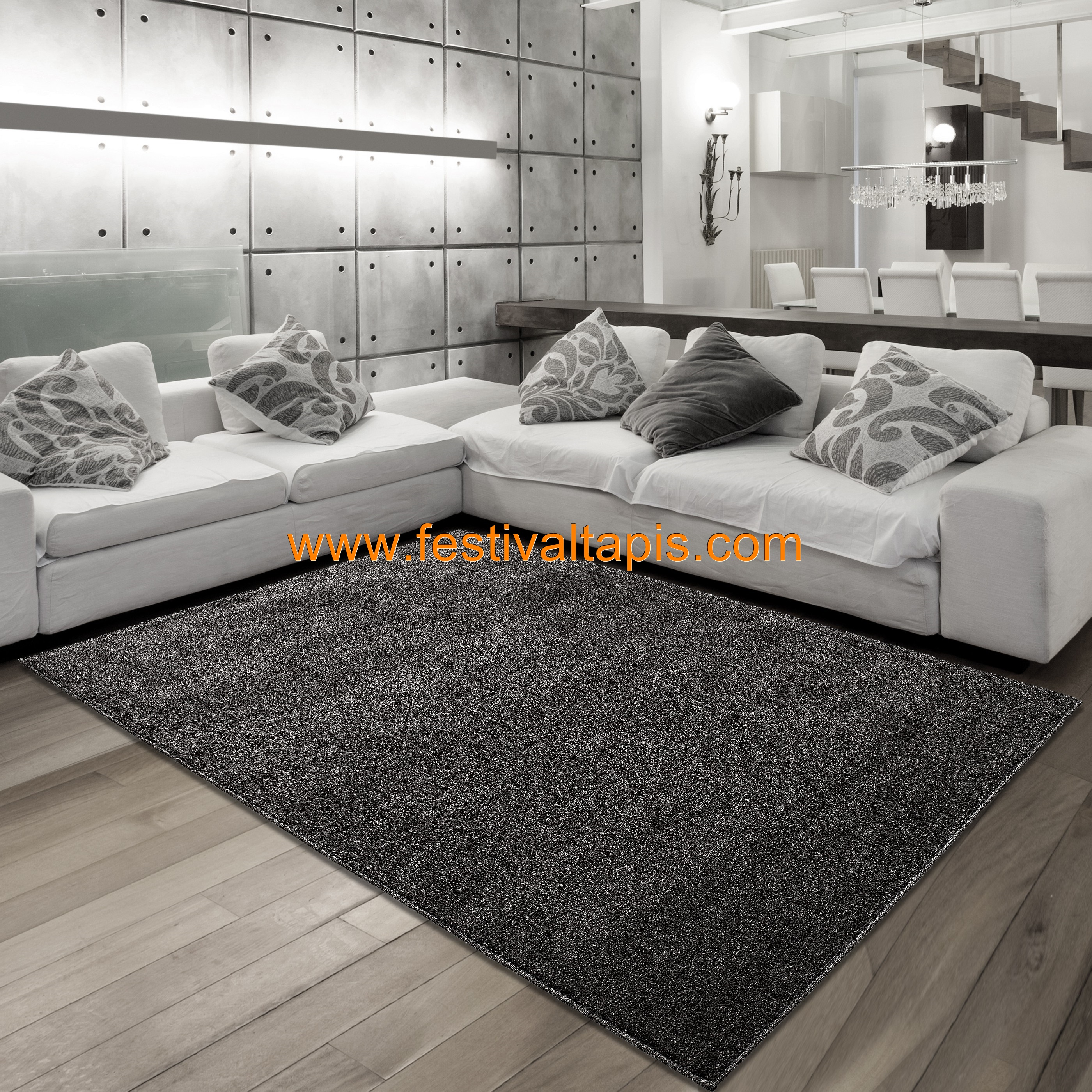 tapis salon gris anthracite id es de d coration. Black Bedroom Furniture Sets. Home Design Ideas