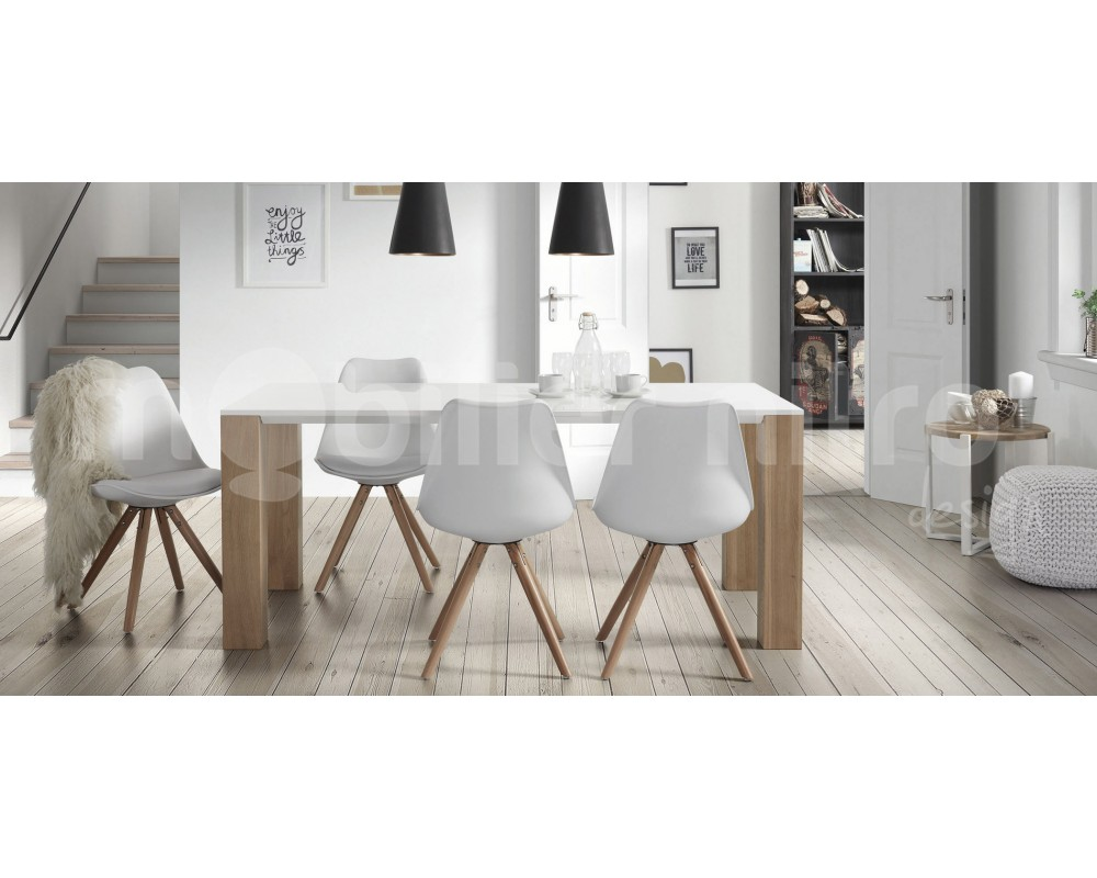 Charmant Table Et Chaise Salle A Manger Moderne