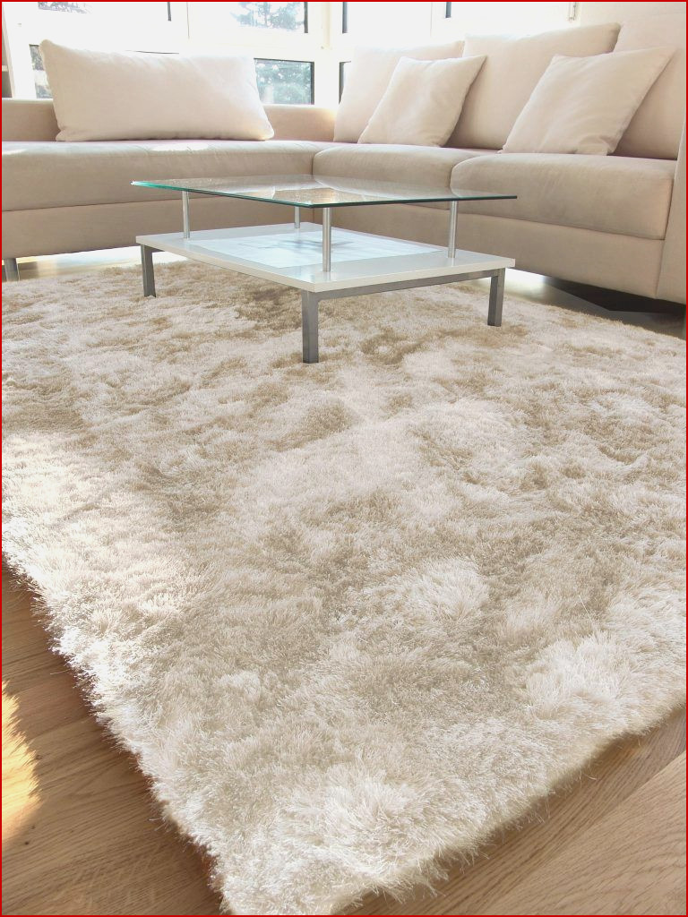 tapis pour salon beige id es de d coration int rieure. Black Bedroom Furniture Sets. Home Design Ideas